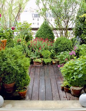 terrazzo piante giardino